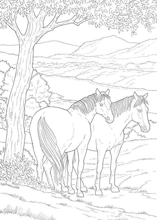 Friendly Educational Horse Coloring Pages