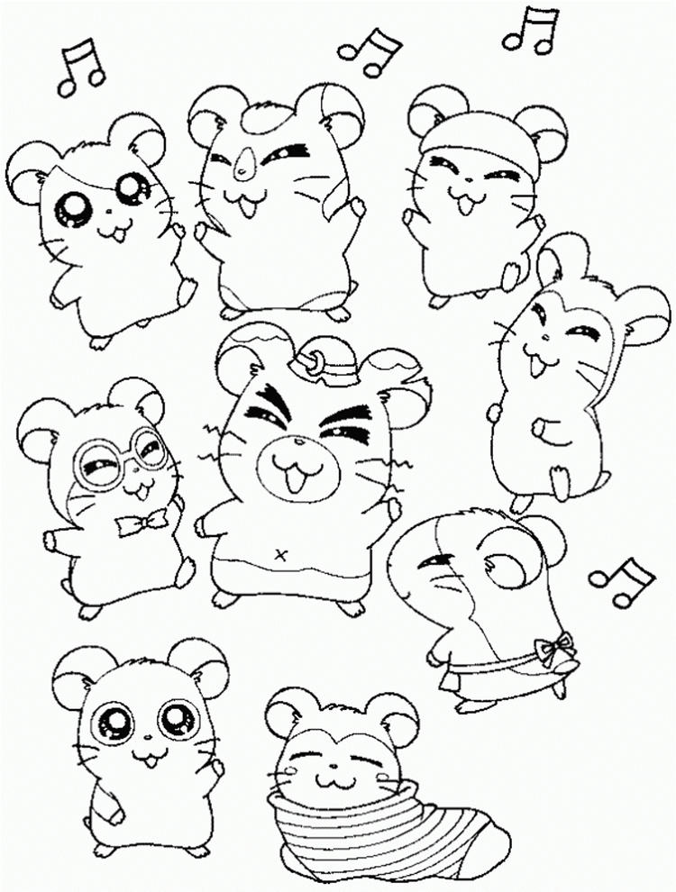 Friends And Hamtaro Coloring Pages