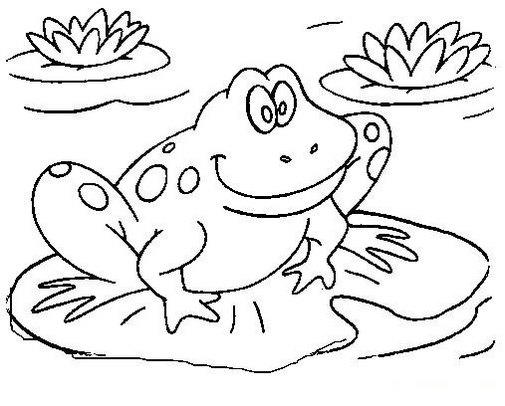 Frog On Water Lily Coloring Page