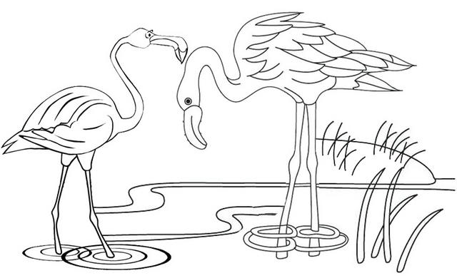 Funny Flamingo Coloring Page For Children