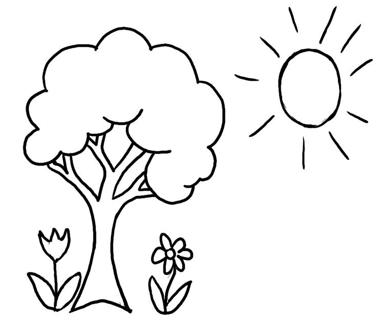 Funny Preschool Coloring Pages Spring