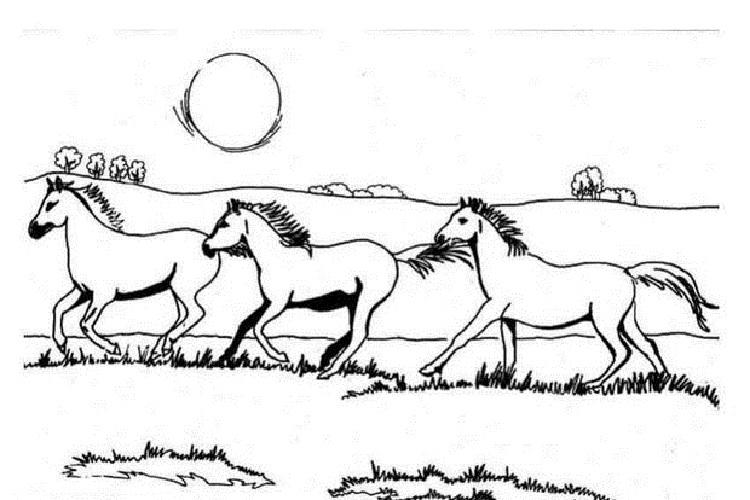 Galloping Horse Coloring Pages
