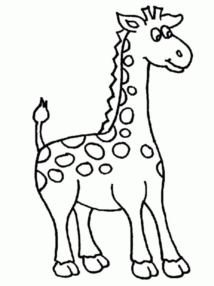 Giraffe Coloring Pages 1