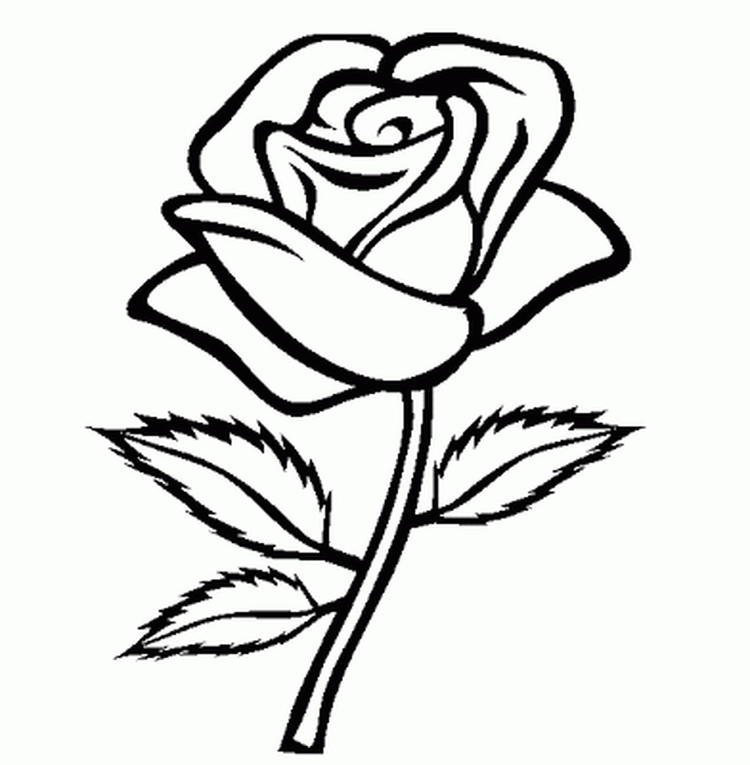Girls Coloring Pages Of Roses