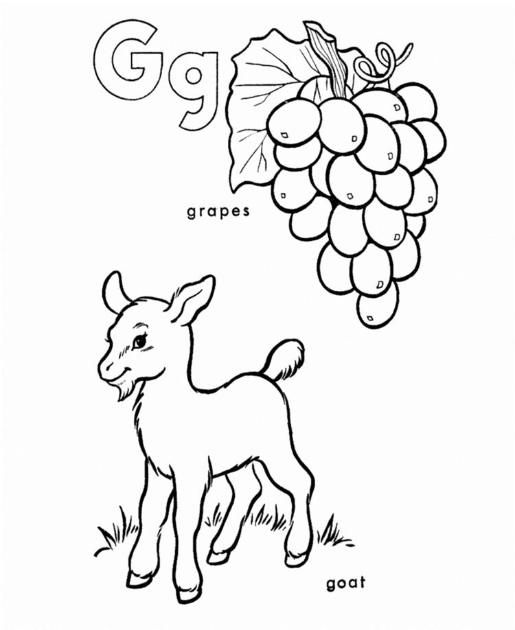 Goat And Grapes Coloring Pages Alphabet G