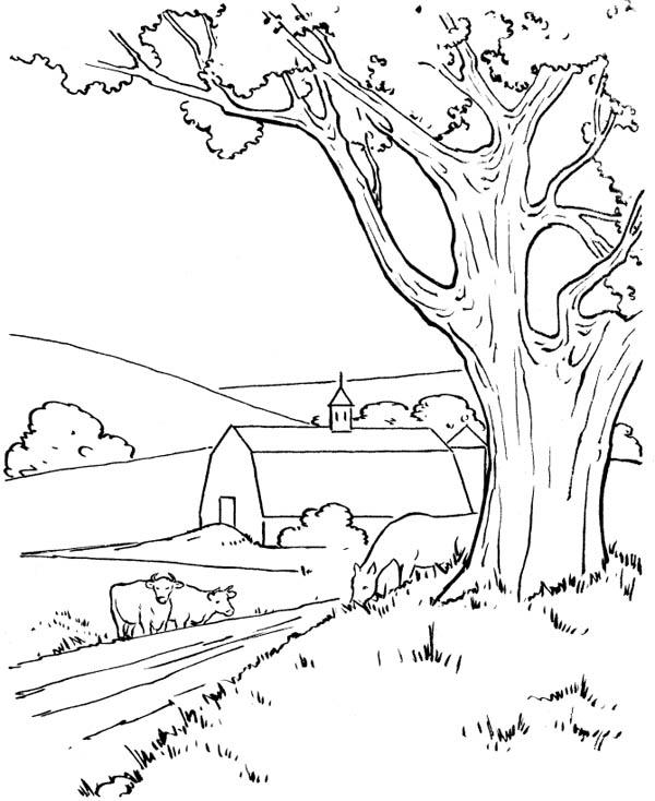 Going To My Father Barn In Farm Life Coloring Pages