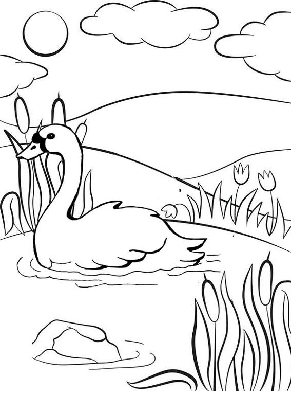 Goose Swimming On The Lake Coloring Page