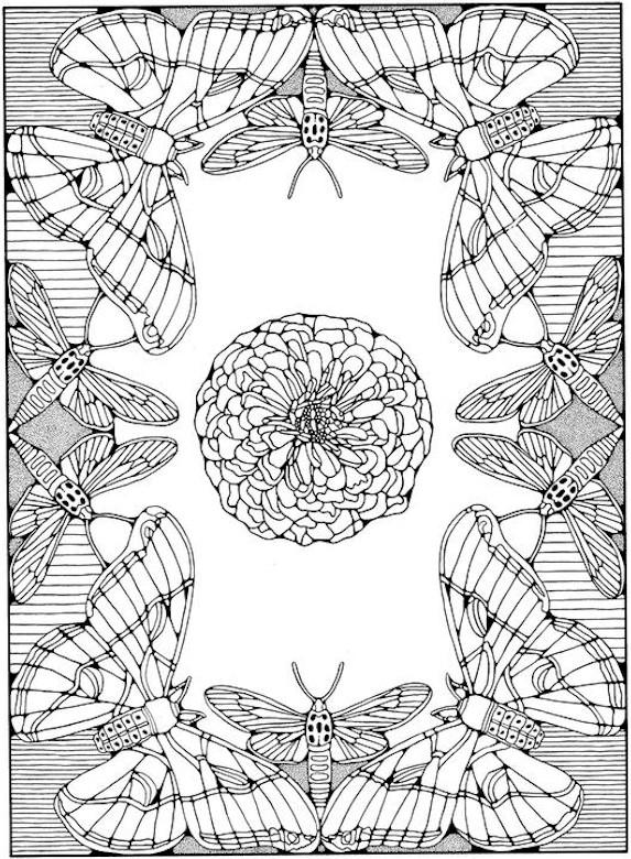 Great Adult Coloring Pages Printable Butterfly