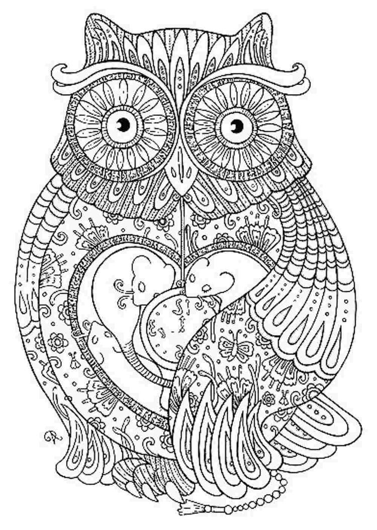 Grown Up Coloring Pages Abstract Owl