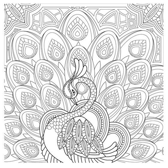Grown Up Coloring Pages Beautiful Peacock
