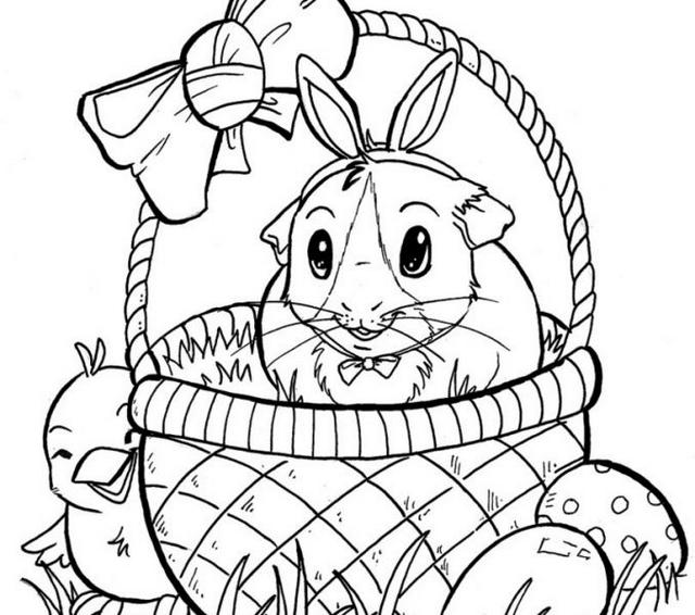 Guinea Pig Drawing Print Out