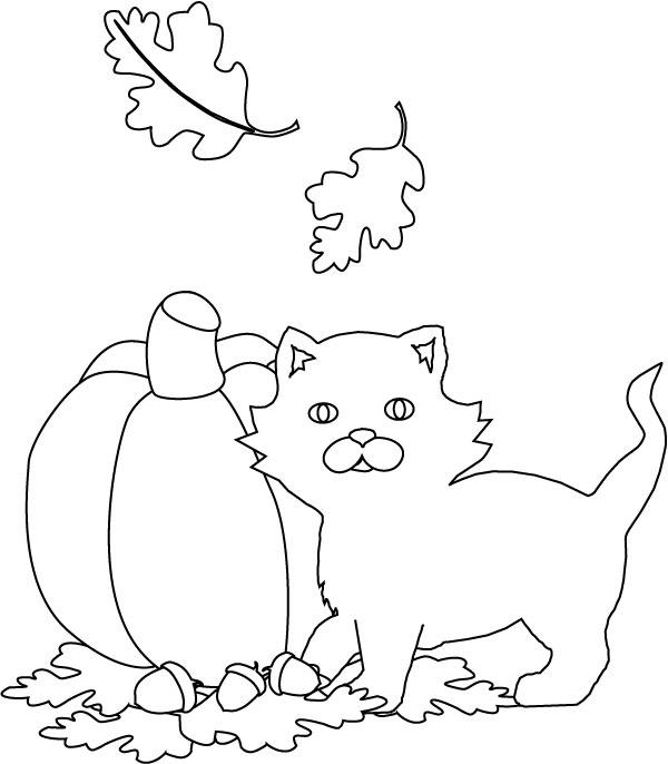 Halloween Cat Coloring Pages 1