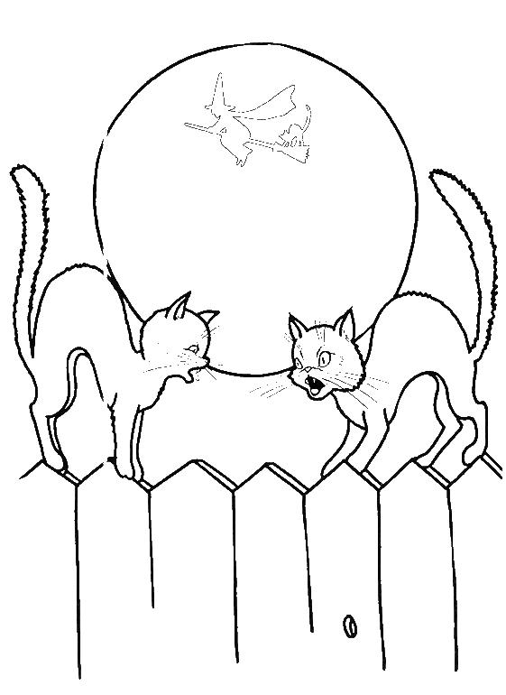 Halloween Coloring Pages Black Cat