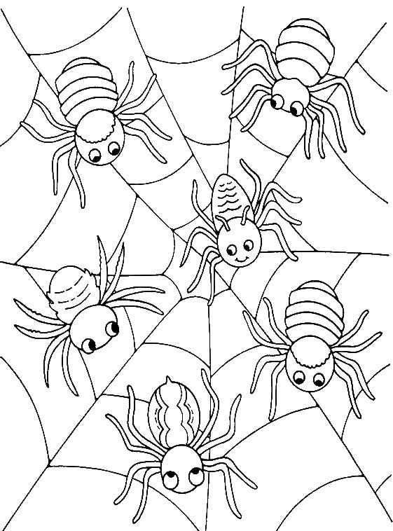 Halloween Coloring Pages Spider Web