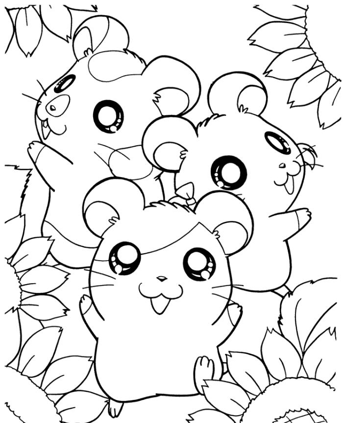 Hamster Coloring Pages Cartoon