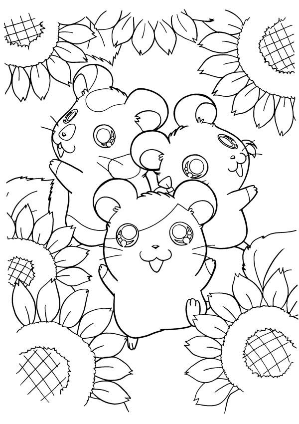 Hamtaro And Friends At Sunflower Garden Coloring Pages