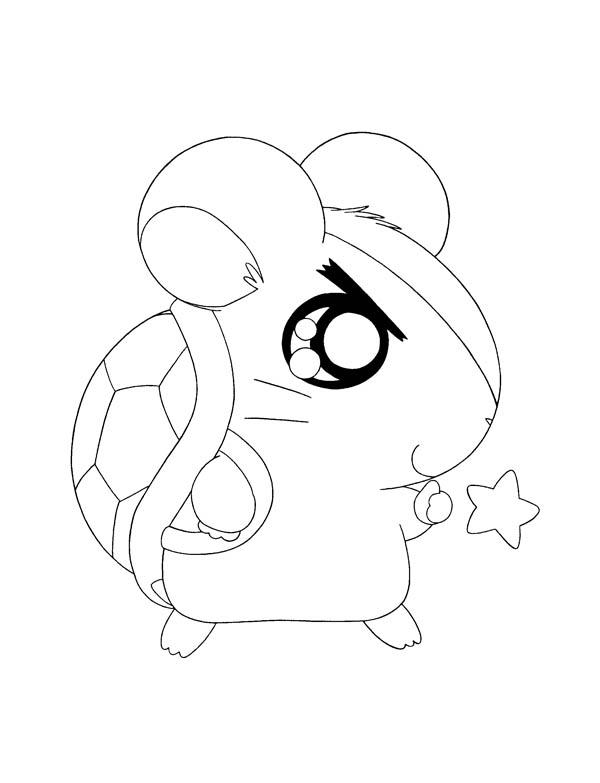 Hamtaro Bring Turtle Home Coloring Pages