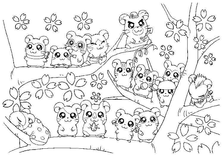 Hamtaro Coloring Pages Ham Ham Gang