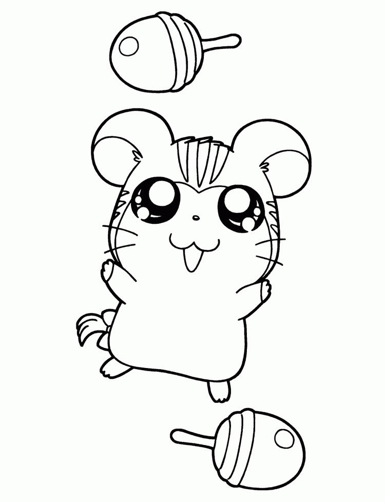 Hamtaro Coloring Pages Stan