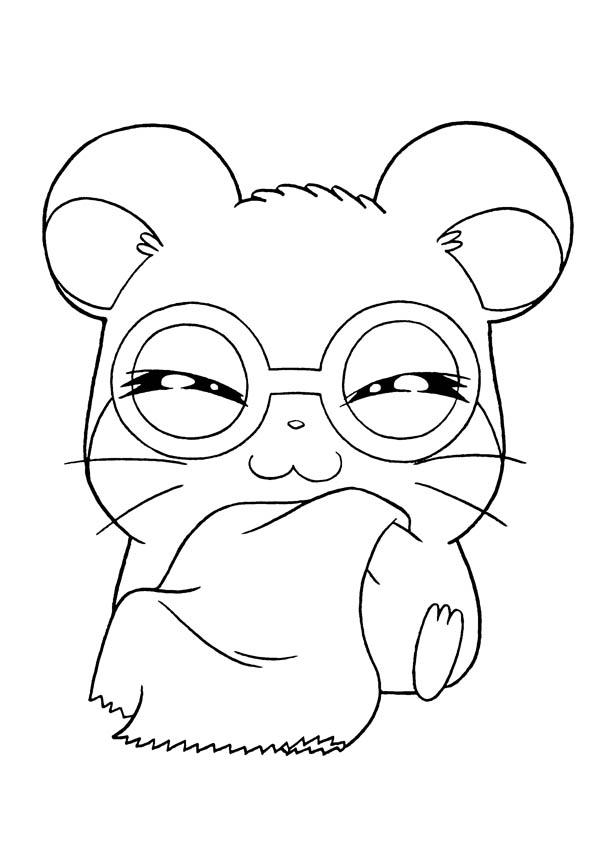Hamtaro Wearing Glassess Coloring Pages