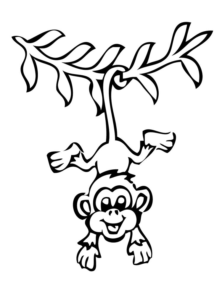 Hanging Monkey Preschool Coloring Pages Zoo Animals