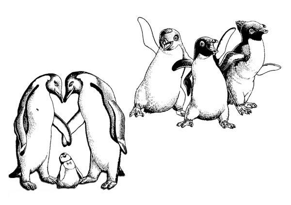 Happy Feet Coloring Pages For Kids