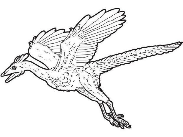Happy Flying Dinosaurs Coloring Pages