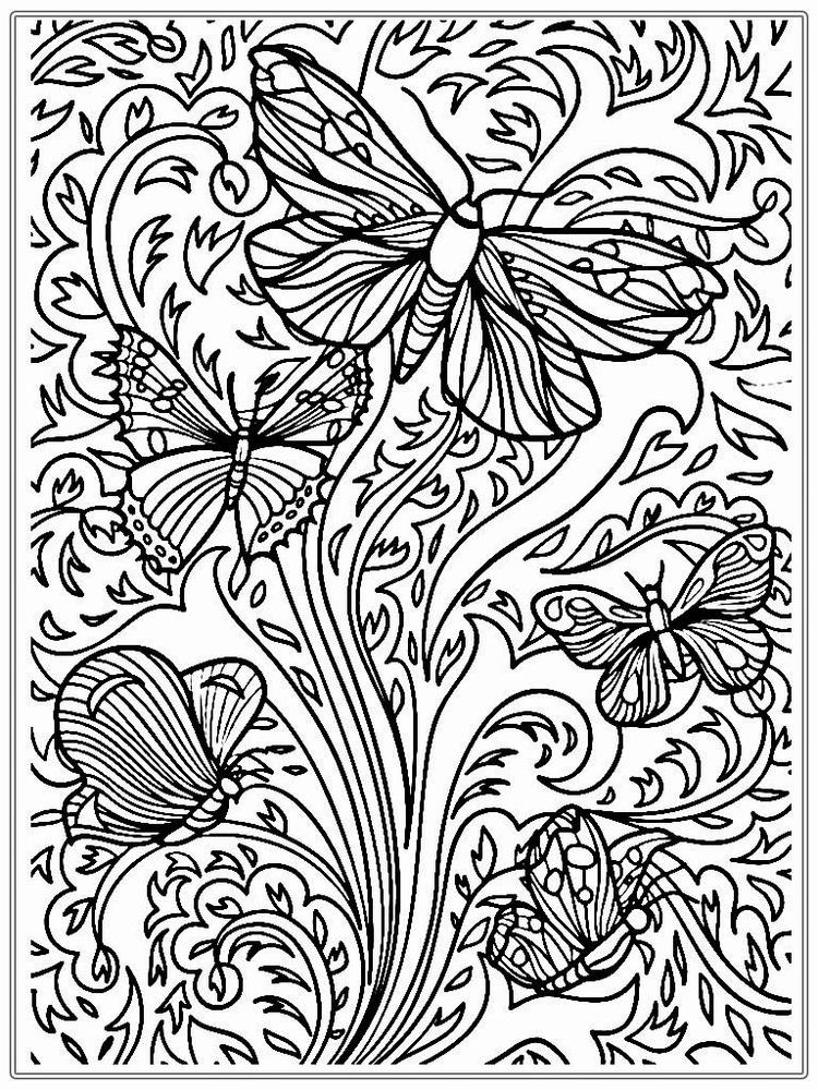 Hard Adult Coloring Pages Printable Butterfly