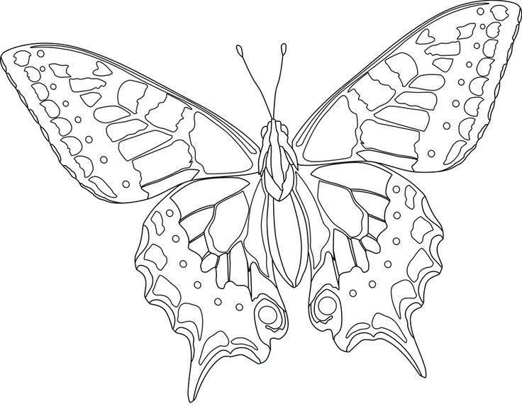 Hard Butterfly Coloring Pages For Kids