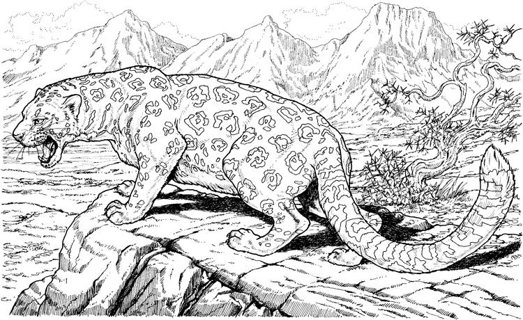 Hard Coloring Pages Of Animals And Nature