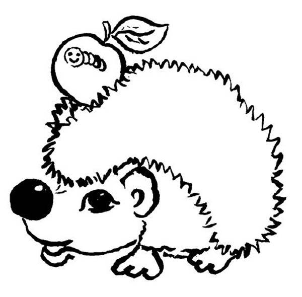 Hedgehog And An Apple With Caterpillar Colouring Pages