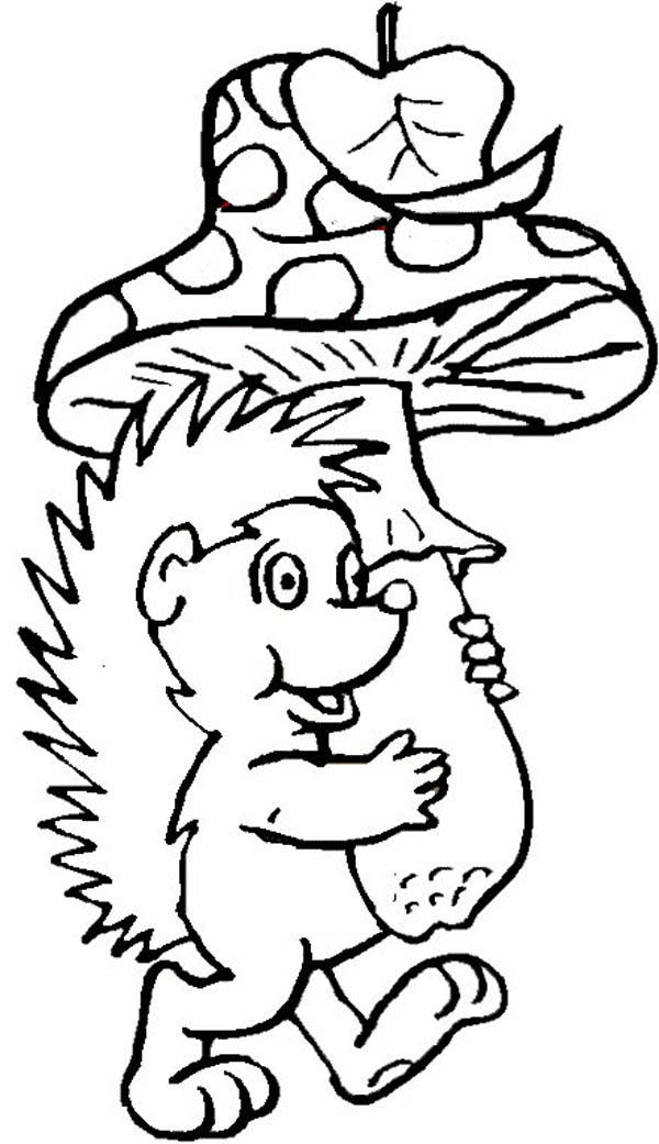 Hedgehog Bring Mushroom To Home Colouring Pages
