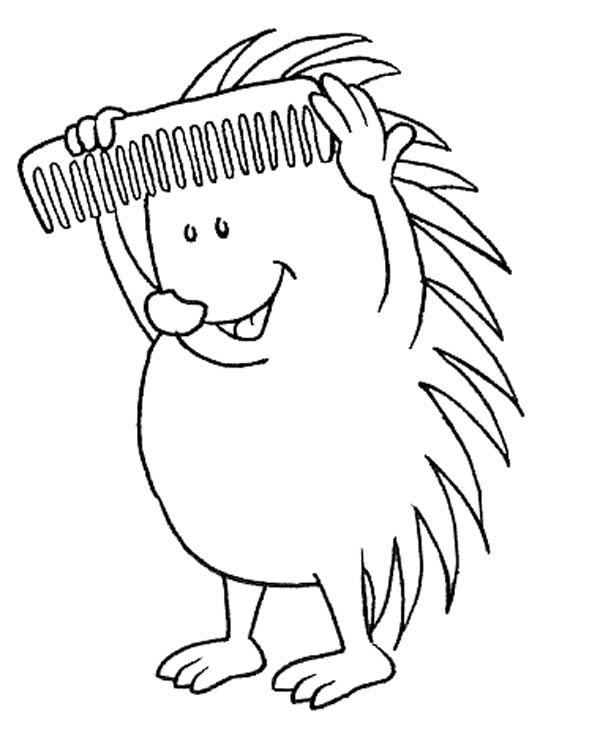 Hedgehog Comb His Spine Colouring Pages