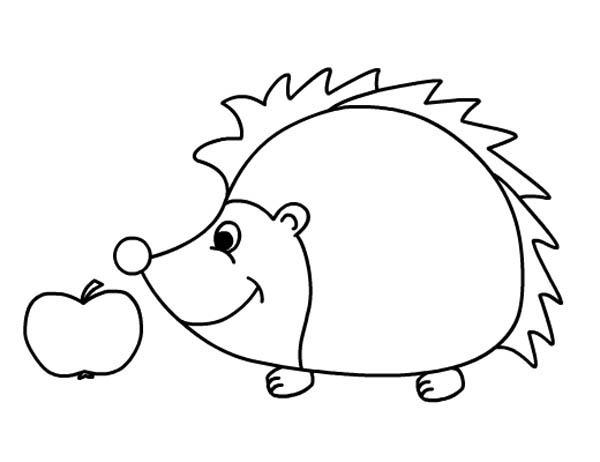 Hedgehog Smelling Apple Colouring Pages