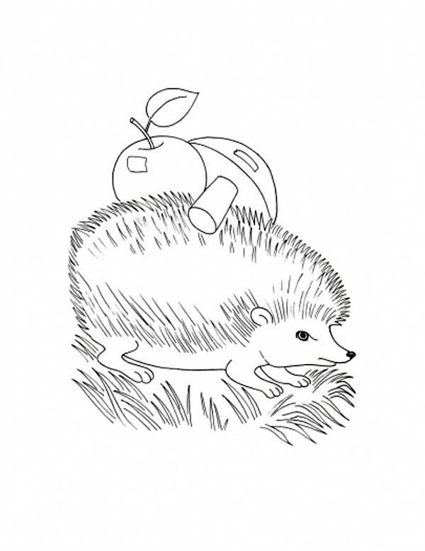 Hedgehog With Apple And Mushroom On His Body Coloring Pages