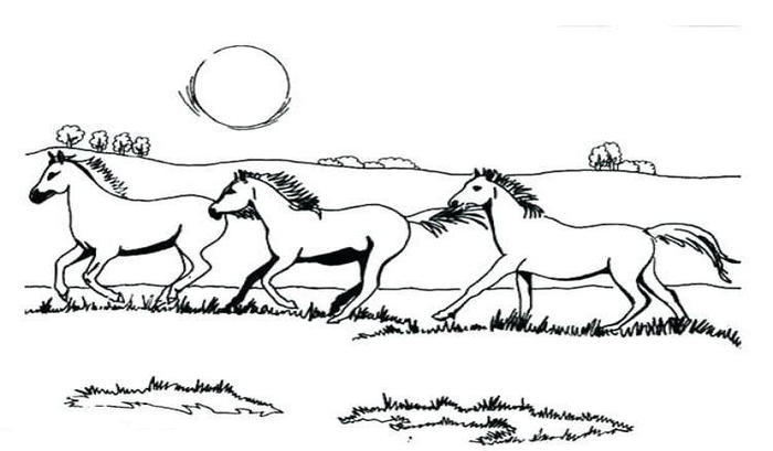Herd Of Horses Coloring Pages