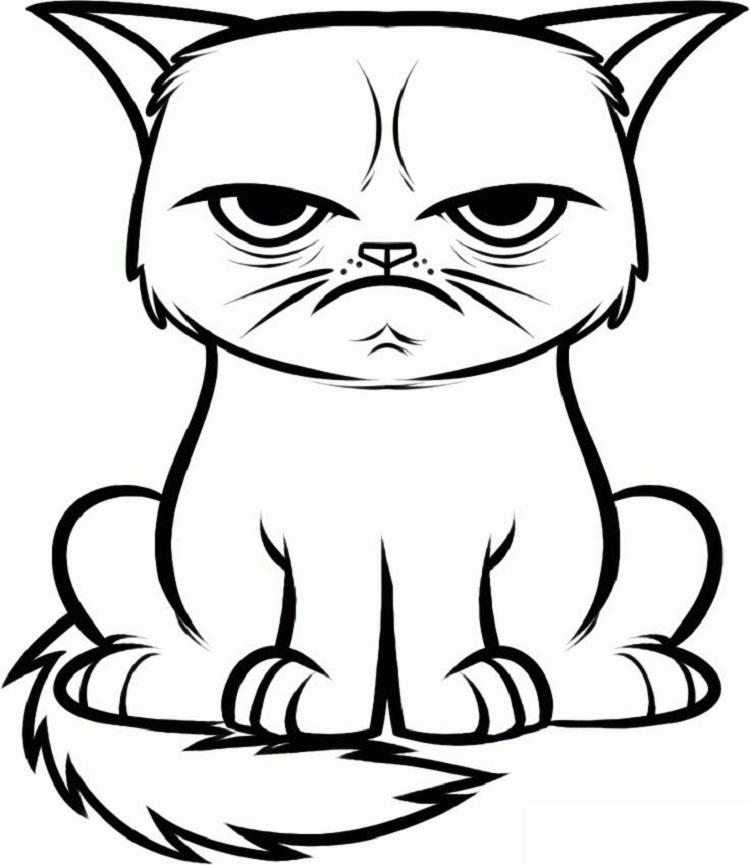 Hissing Cat Coloring Pages