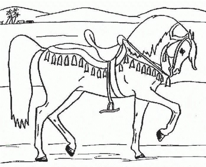 Horse Animal Coloring Pages Boys
