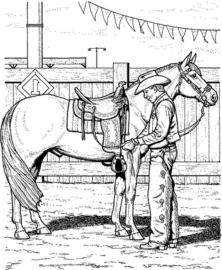 Horse Coloring Pages And Cowboy