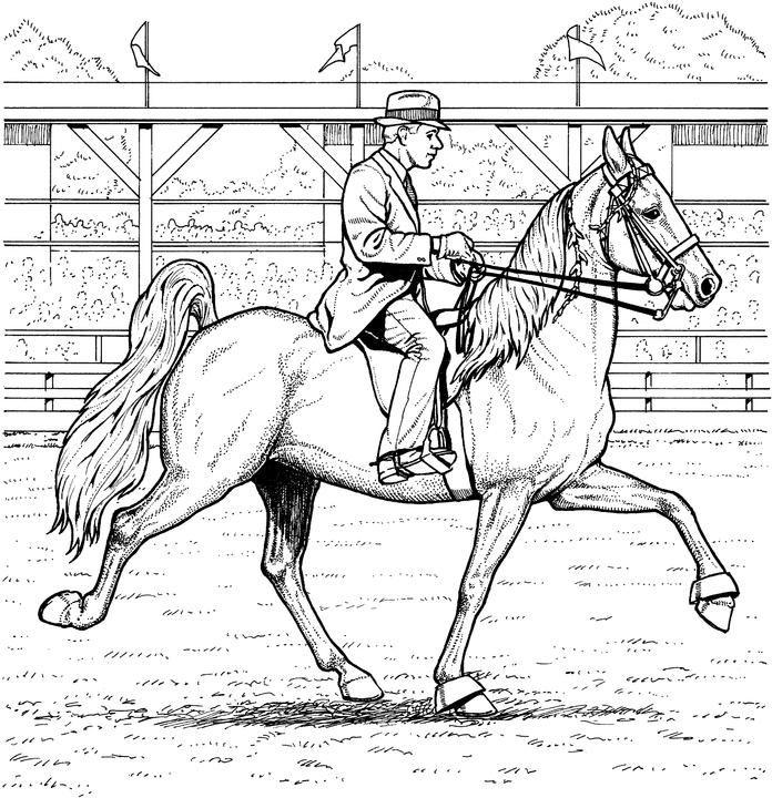 Horse Coloring Pages Contest