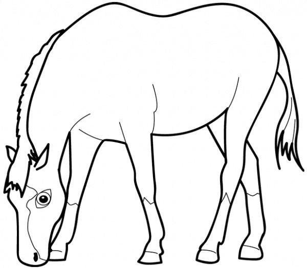 Horse Eating Coloring Pages