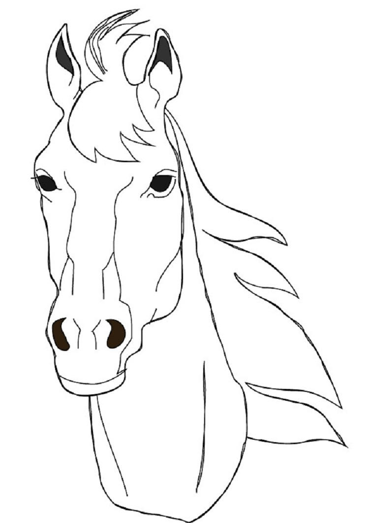 Horse Head Coloring Pages To Print