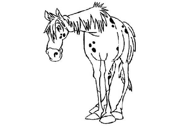 Horse Of Pippi Longstocking Coloring Pages