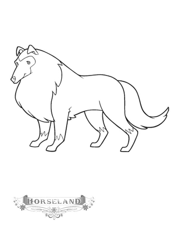 Horseland Coloring Pages Shep