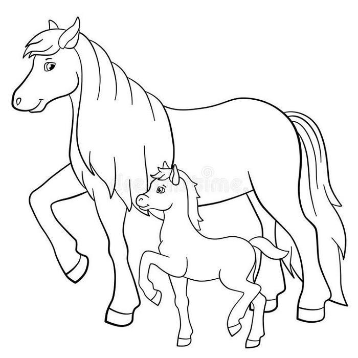 Horses And Foals Coloring Pages