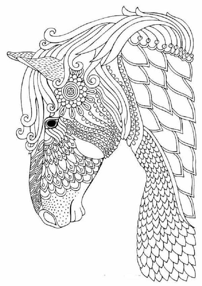 Horses Zentangle Coloring Pages