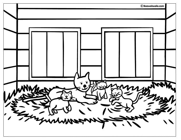 House Cat Coloring Pages
