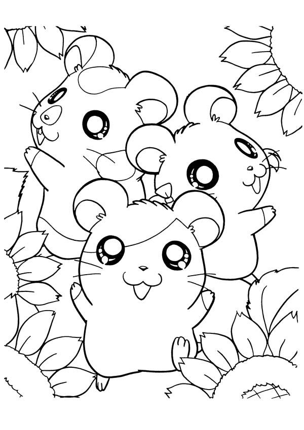 How To Draw Hamtaro Coloring Pages