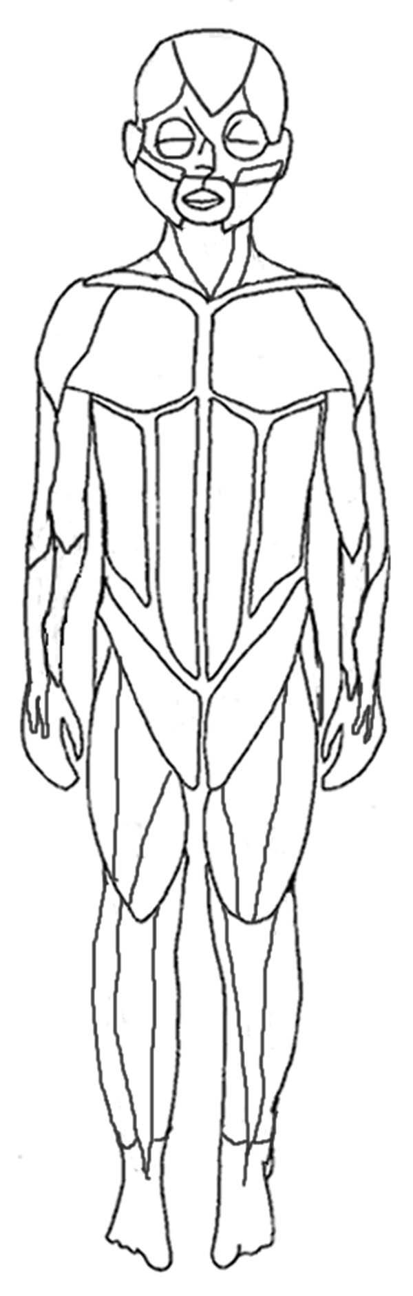 Human Anatomy Human Muscles Coloring Pages