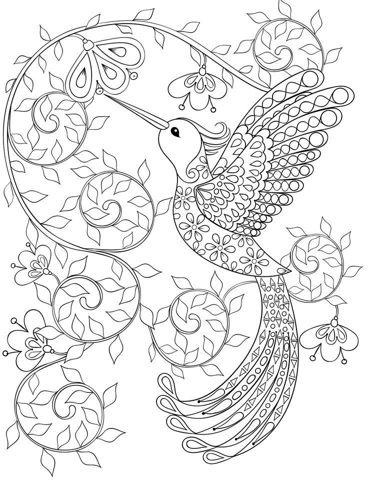 Hummingbird Coloring Pages For Adults Printable